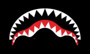 Sprayground-Logo